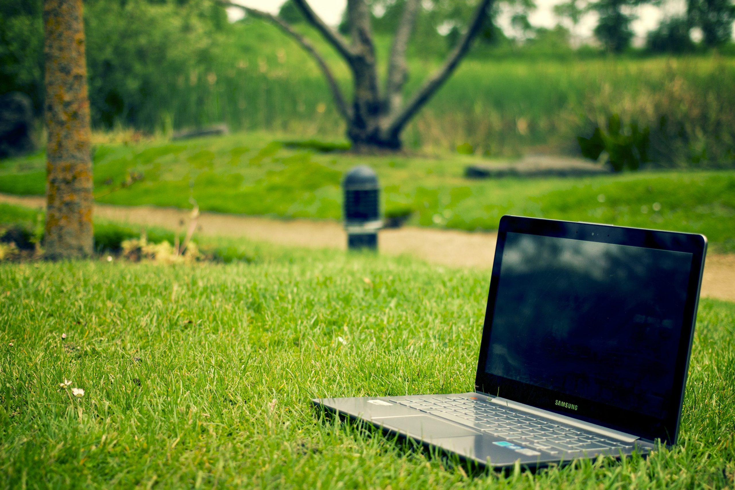The Remote Firm. Увеличивай свой доход и развивай бизнес онлайн